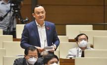 Đại biểu Quốc hội lo lắng tình trạng hưởng bảo hiểm xã hội một lần tăng cao