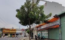 TP HCM: Kiến nghị hàng quán bán tại chỗ đóng cửa trước 21 giờ, phục vụ tối đa 50% công suất