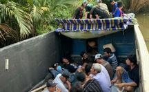 """CLIP: Cảnh sát hình sự hóa trang thương lái mua lúa để """"hốt"""" trường gà"""