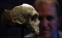 Một loài người siêu đẳng tuyệt chủng vì... giao phối với tổ tiên chúng ta?