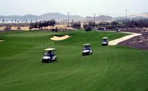 """Chơi golf """"lậu"""" giữa mùa dịch, giám đốc sở, cục phó và 2 đại gia ở Bình Định thành F1"""