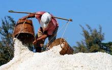 Kiếm trăm triệu nhờ làm muối Cần Giờ