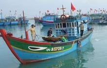 Ăn theo giàn khoan HD-981, tàu cá Trung Quốc lộng hành