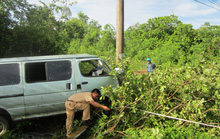 Ô tô mất lái đâm gãy cột điện, mắc kẹt trên cây