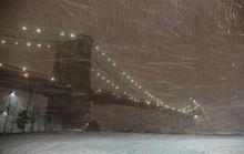 Mỹ: New York hứng mưa dao găm