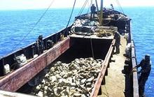 Philippines phạt tù 12 ngư dân Trung Quốc