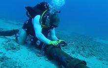 Cáp quang biển AAG phục hồi sớm hơn dự kiến 4 ngày