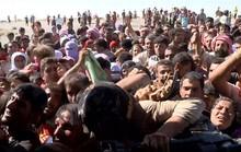 Iraq: Thảm cảnh của người Yazidi tại thung lũng tử thần