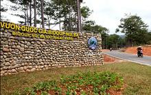 Kỳ vọng Lang Biang thành khu dự trữ sinh quyển