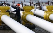 Nga: Gazprom không khai thác cùng Trung Quốc