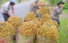 Trái cây tăng giá 3 - 4 lần, nông dân hết hàng để bán