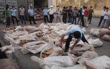 Một tấn ngà voi nhập lậu qua cảng Hải Phòng