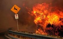 Miền Nam California chìm trong biển lửa
