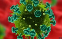 Hi vọng mới từ gel chống HIV