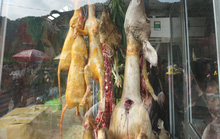 Vừa khai hội chùa Hương đã thấy chặt chém, thịt thú rừng