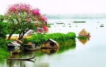 Cùng Saigontourist về thăm miệt thứ Cà Mau