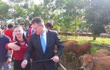 Prudential tặng 50 con bò cho 50 hộ gia đình nghèo