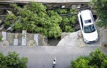 Trung Quốc: Hố tử thần nuốt chửng bãi đậu xe hơi