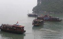Bitexco muốn quản vịnh Hạ Long 50 năm