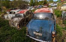1.000 ô tô cổ bị bỏ quên trong rừng