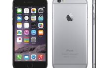 Người dùng Việt chê iPhone 6 kém sáng tạo