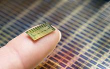 Ngừa thai bằng... chip máy tính