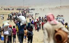 Iraq: Hàng trăm người Yazidi trốn xuống núi