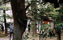 Nghi can đánh bom đền chiến tranh Yasukuni đến từ Hàn Quốc?