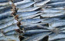 Bị ngộ độc sau khi ăn cá nục hấp sấy