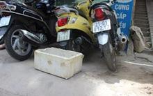 Đi vứt rác phát hiện bé sơ sinh động đậy trong thùng xốp