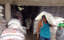 Xuất khẩu gạo lại đình đốn