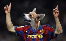 """Messi là một chú chó biết đá bóng"""""""