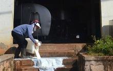 Ba lựa chọn từ chuyện nông dân đổ sữa