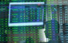 Cổ phiếu Vinamilk bật tăng trong ngày điều chỉnh giá