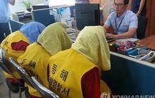 Bắt giữ 7 người Indonesia vì tội sát hại một thuyền viên Việt Nam