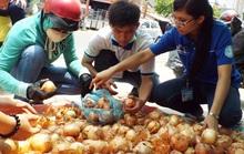 Người Sài Gòn giải cứu hành tây giúp nông dân Đà Lạt