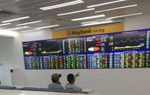 Cổ phiếu đầu cơ nổi sóng