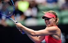 Bouchard lại thua Sharapova trong đại chiến người đẹp