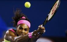 """114 tuần thống trị thế giới và bí quyết """"trường thọ"""" của Serena Williams"""
