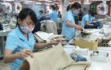 Đình chỉ các quyết định trái luật tại Công ty CP May Sài Gòn 3