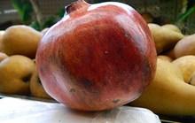 Trái cây ngoại kích cỡ khủng giá khủng