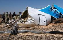 Ai Cập xác nhận máy bay Nga bị khủng bố triệt hạ