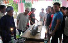 """Cá voi """"lụy"""" dạt vào bờ biển Quy Nhơn"""
