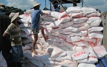 """Thương lái """"năn nỉ"""" nông dân giảm giá bán lúa"""