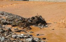 Công nhân thủy điện Đắk Mi 2 bị nước lũ cuốn mất tích