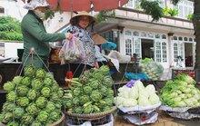 Hàng Trung Quốc lại nhái nông sản Đà Lạt