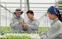 Nâng cao vị thế nông sản Việt