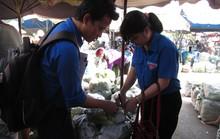 TP HCM: Lấy mẫu rau quả chợ đầu mối kiểm tra