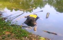 Đi đổ rác, phát hiện thi thể trôi sông