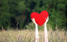 Hãy công bằng với... trái tim